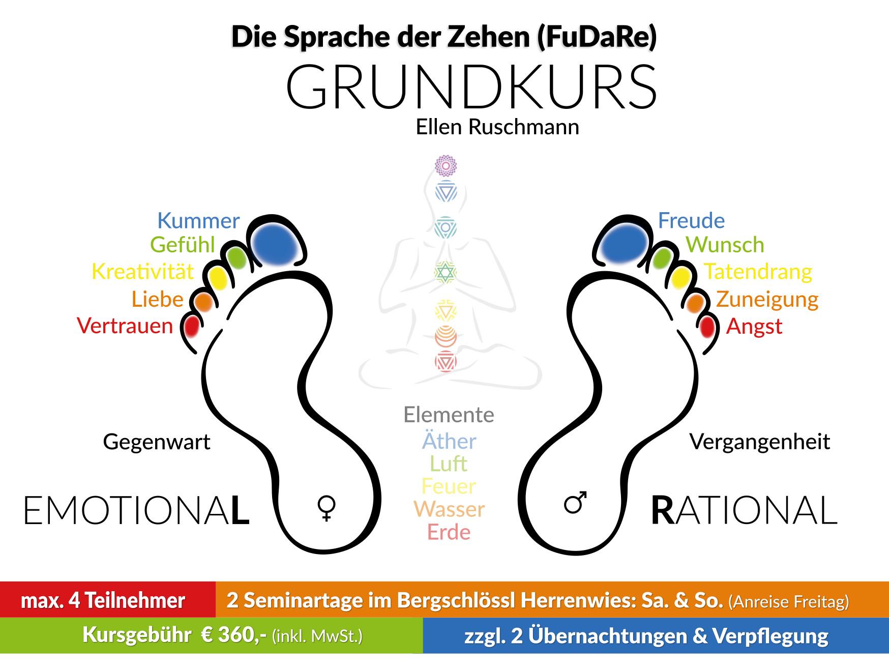 Ausbildung Zehenlesen FuDaRe Grundseminar 2019 bei Ellen Ruschmann
